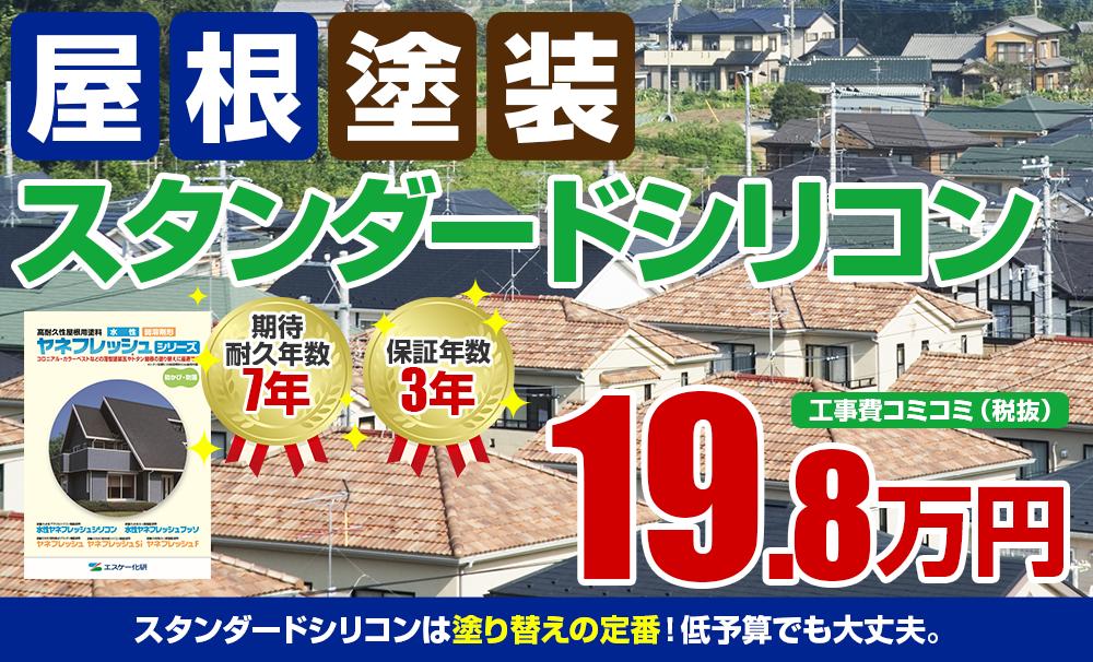 スタンダードシリコン塗装 19.8万円